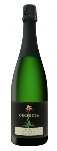 """Sasbacher Winzersekt Pinot extra Brut """"Edition Orchidea"""""""